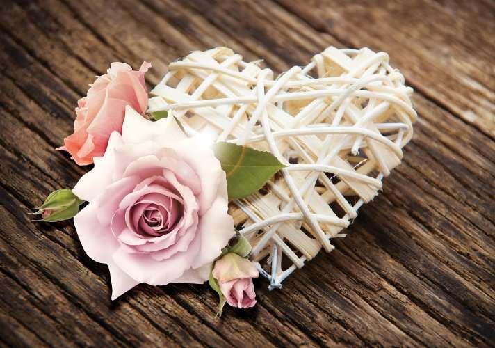 Rose on Wood - C02111