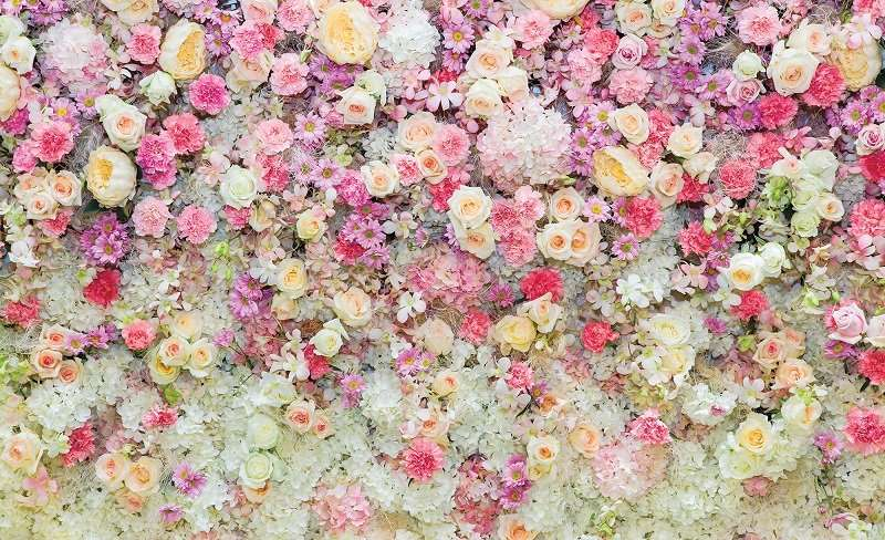 Rose Wall - C02127