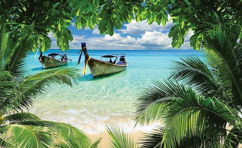 Boats - C0446