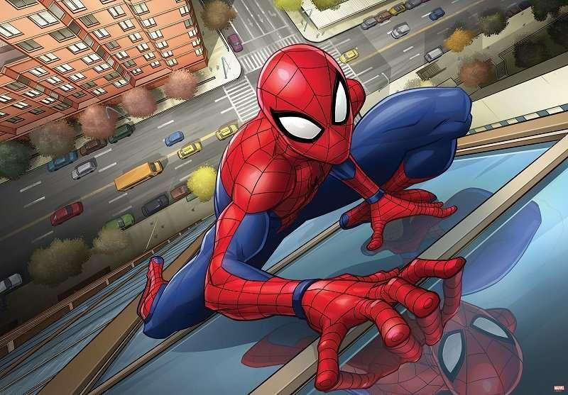Spiderman - D65