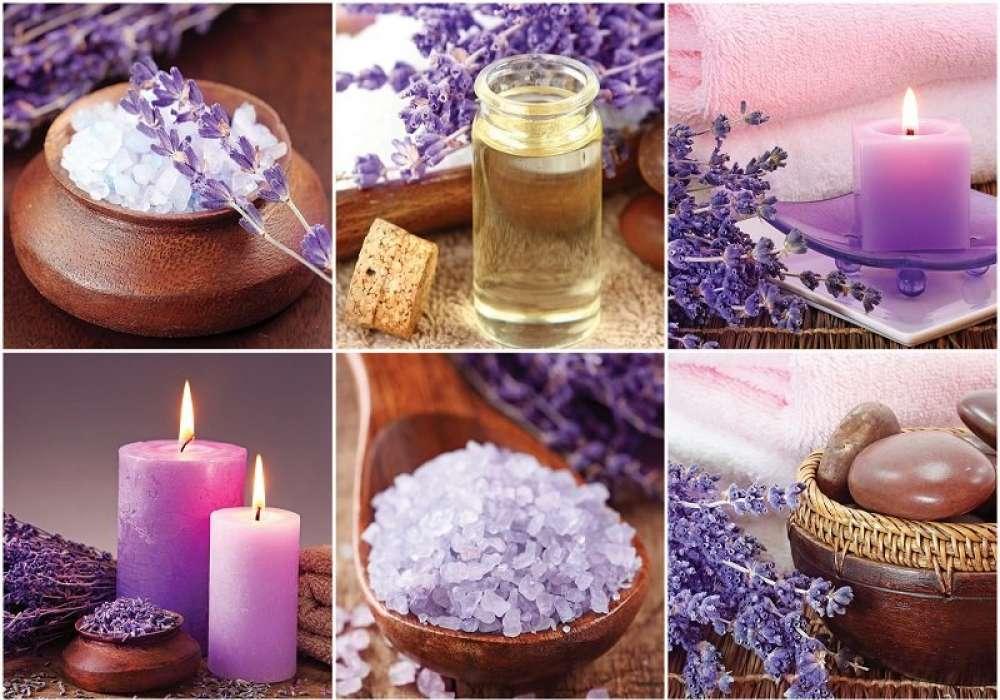 Purple Zen Stones - C02119