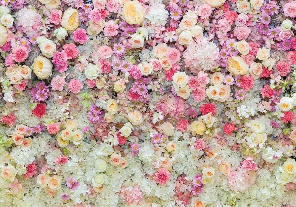 Rose Wall - C02127