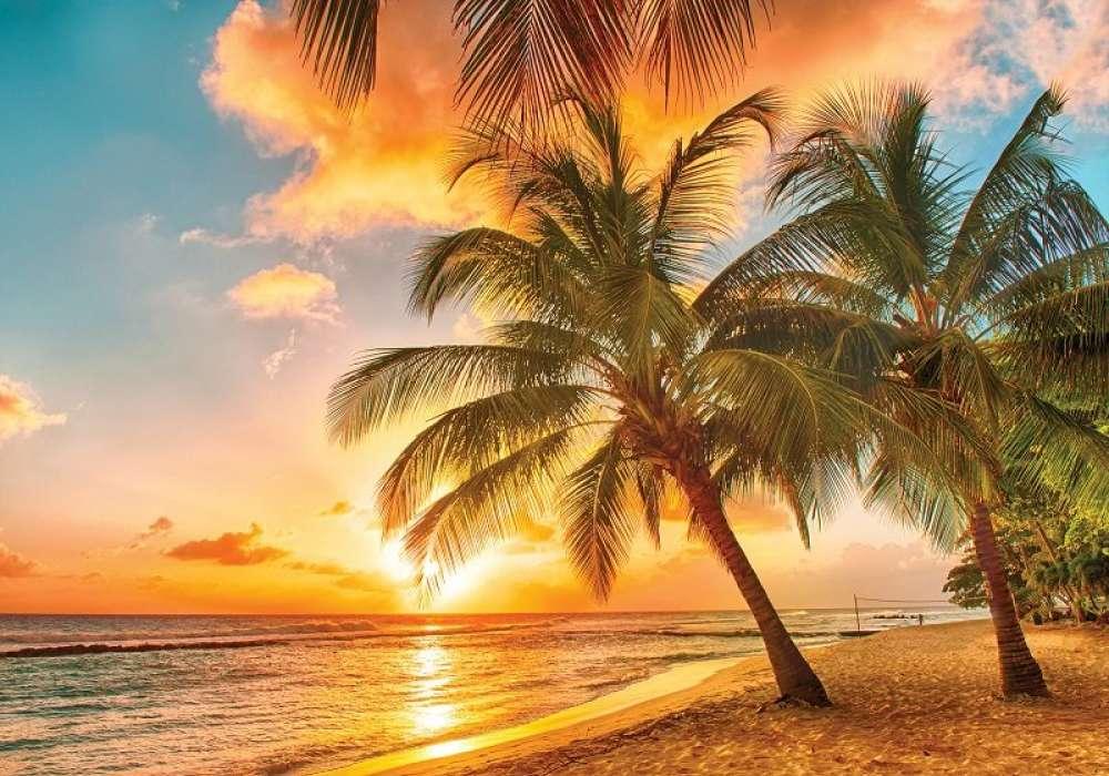 Beach on Sunset - C0296