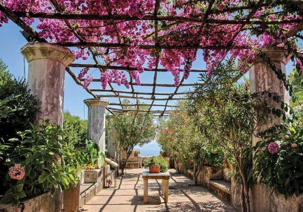Mediterranean Garden - C02113