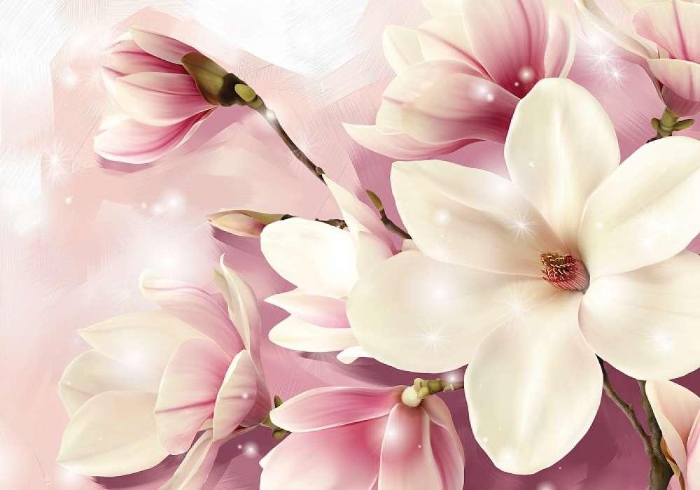Magnolia - C02143
