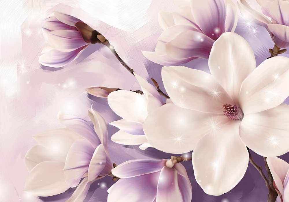 Magnolia - C02144