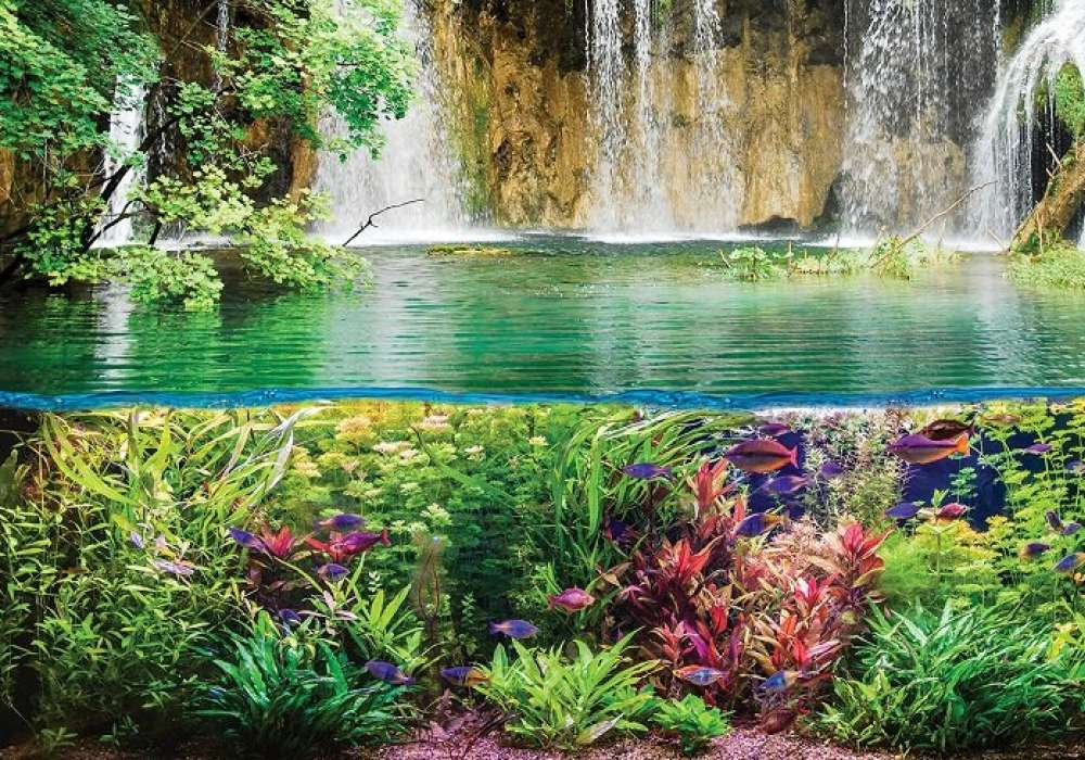Waterfall Underwater - C0493