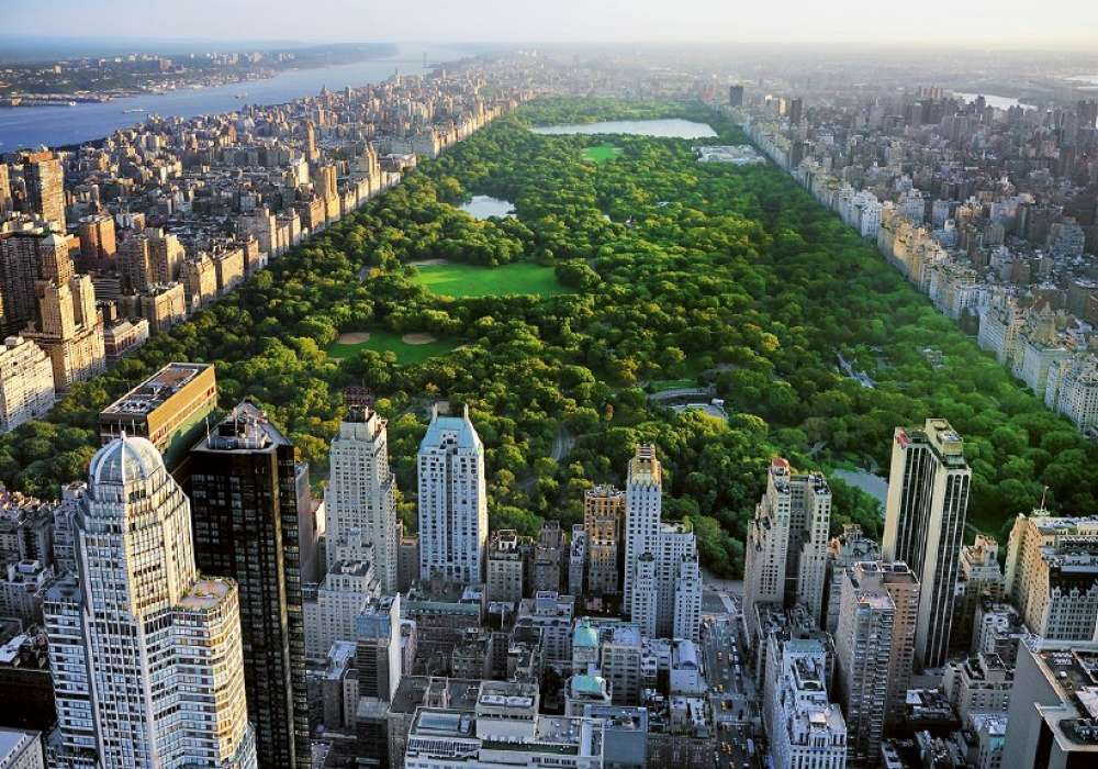Central Park - 0855