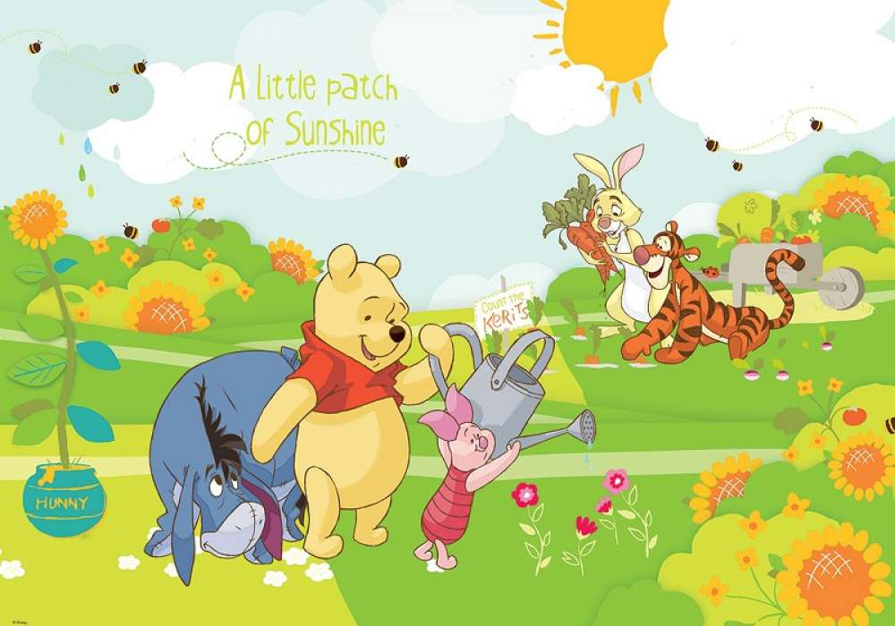 POOH AND FRIENDS -  D48