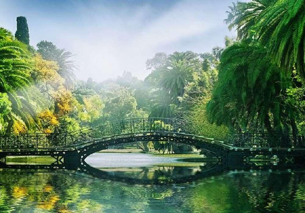 Bridge in the Park - 0809