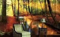 фототапет поток в гората