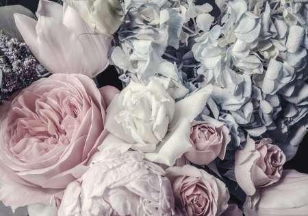 Фототапет с божури и роза - 12746