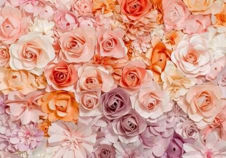 Flowers - 0843