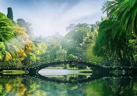 ПРОМО - Bridge in the Park - 0809