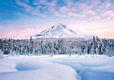 ПРОМО - Winter - 0828