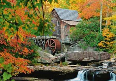 Forest Mill - 0404
