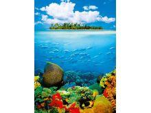 Treasure Island - 0410