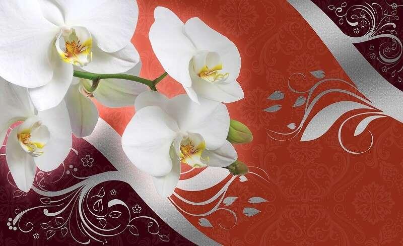 фототапет орхидея на червен фон