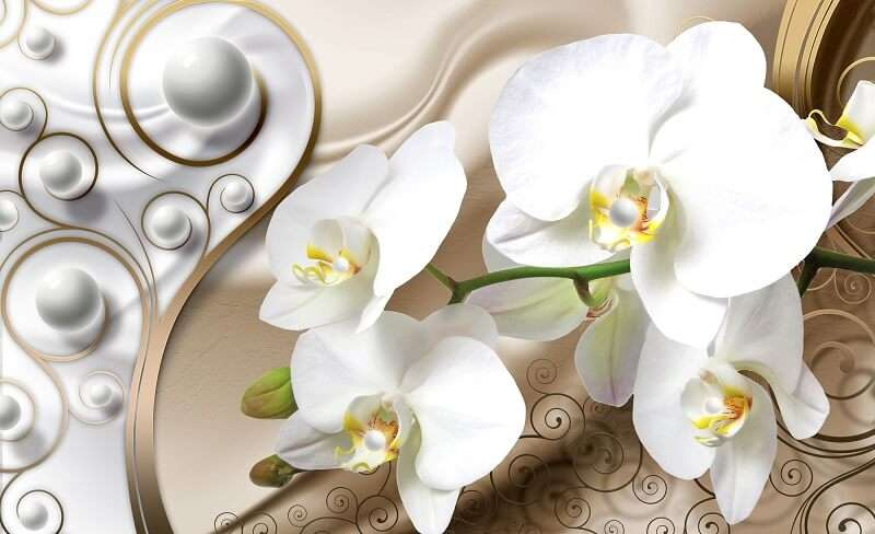 фототапет абстрактен с бяла орхидея