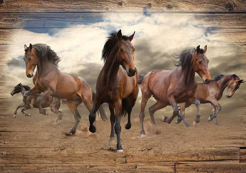 Фототапет с надбягване на коне