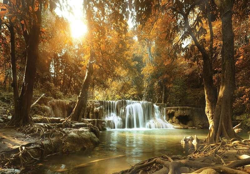 Фототапет златна есен с чуден водопад
