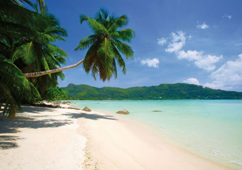 Beach - 1409