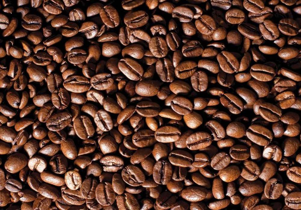 Beans Coffee Wall- C0270
