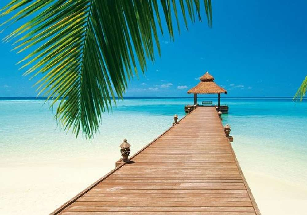 Paradise Beach - 0815