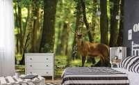 фототапет елен в гората 0484