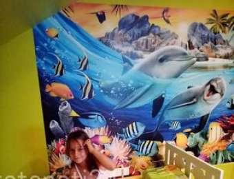 Фототапет делфин