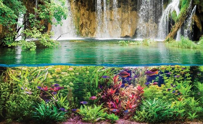 фототапет с водопад и риби
