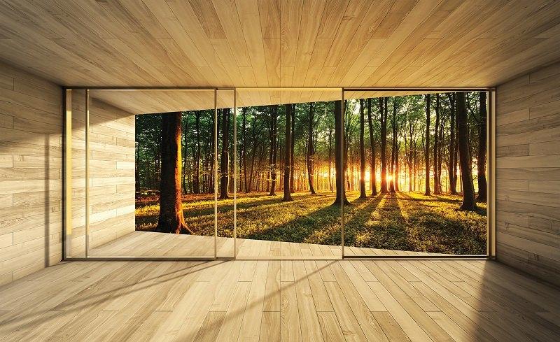 3d fototapet pădure însorită
