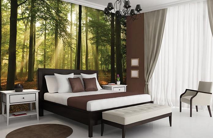 fototapetul pentru dormitor unei păduri